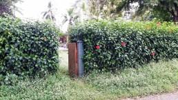 cr-gate