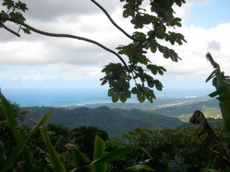 el-yunque-view-2