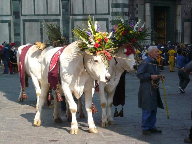 florence-scoppio-del-carro-oxen-travelnerdplans
