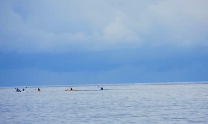 kayak-3-1