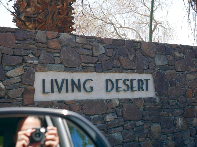 living desert entrance 2 travelnerdplans