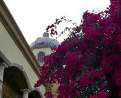 palm springs dome and bouganinvilla travelnerdplans