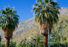palm springs hills travelnerdplans