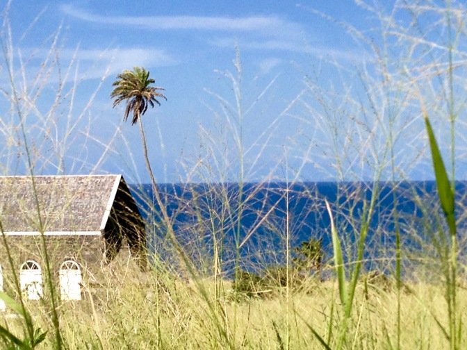 st kitts building and palm travelnerdplans