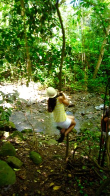 swinging in the jungle