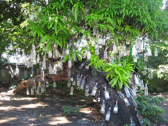 st kitts rum bottle tree travelnerdplans