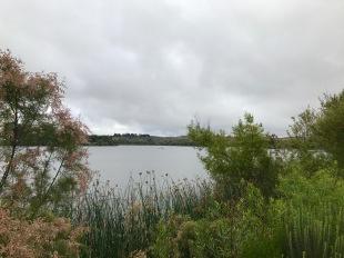 Lake O'Neill