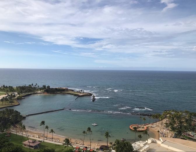 caribe hilton room view
