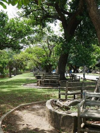 park near caribe