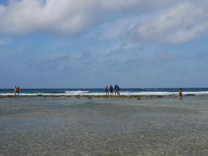 aruba mangel halto beach walk