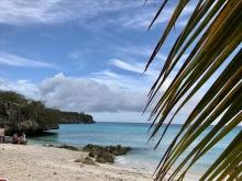 curacao playa porto mari palm
