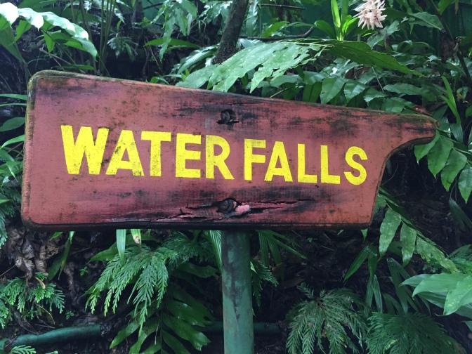 dominica trafalgar falls 4