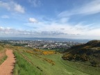 Blue Skies, Yellow Flowers, and Beautiful Views from Arthur's Seat